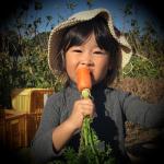 EyeCatch機能性野菜